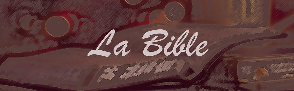 bible-comment étudier la Bible?